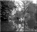 TQ0557 : Two Men in a Boat, River Wey near Ockham by Dr Neil Clifton