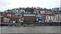 ST5772 : Sculling in Bristol Harbour by Anthony O'Neil