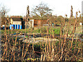 TG3106 : Allotment gardens in early December by Evelyn Simak