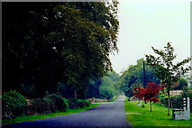 N1336 : Castledaly Manor area - R444 near the manor by Joseph Mischyshyn