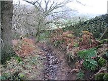 SK2376 : Footpath from Top Riley to B6521 near Eyam by Chris Wimbush