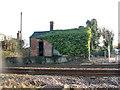 TG1704 : Hethersett station - the platform goods store by Evelyn Simak