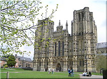 ST5545 : Wells Cathedral by Martin Brown