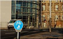 J3474 : Cycle lane sign, Belfast by Albert Bridge