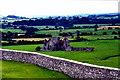 S0740 : Cashel - Ruins of Hore Abbey (1272) by Joseph Mischyshyn