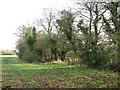 TM1598 : Path along paddocks by Evelyn Simak