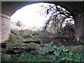 TM1598 : Below bridge FWWI 1666 by Evelyn Simak