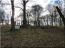 SK1861 : Kenslow Knoll by Peter Barr