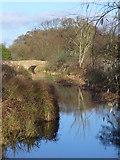 TQ1469 : Longford River, Bushy Park by Colin Smith