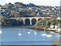 SX4258 : The Saltash viaduct from St Budeaux by Sarah Charlesworth