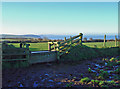 SN1245 : Cattle trough near Gilfach, Pant-y-groes by Dylan Moore