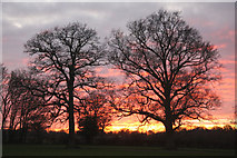 TL8063 : Sunset at Little Saxham by Bob Jones