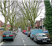 SO9097 : Lonsdale Road, Wolverhampton by Roger  Kidd
