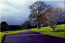 N8096 : Kingscourt - Cabra Castle entrance by Joseph Mischyshyn