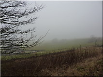 SK1462 : Houses in the fog by Peter Barr