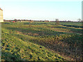 SK7645 : Medieval fishponds at Sibthorpe by Alan Murray-Rust