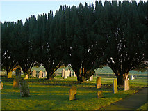 SK7645 : Sibthorpe churchyard by Alan Murray-Rust