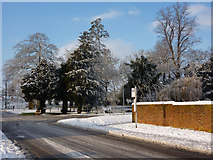 TM0855 : Barrett's Lane on a snowy day by Andrew Hill