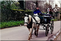 V9589 : Killarney - Jaunting car leaving castle on Ross Road by Joseph Mischyshyn