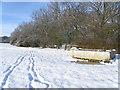 TL1387 : Water trough near Caldecote wood by Michael Trolove