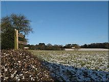 SO9875 : Brown's Way Footpath, Beacon Lane by Roy Hughes