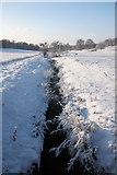 TL8162 : River Linnet in Ickworth Park by Bob Jones