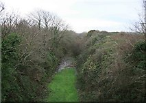 SX0479 : North Cornwall Railway cutting at Trekee by roger geach