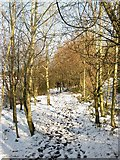 TQ2912 : Permissive Bridleway to Rockrose by Simon Carey