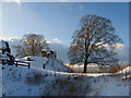 SD5292 : Kendal Castle entrance by Ian Taylor