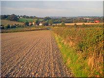 SK4565 : Farmland south of Stainsbybrook by Trevor Rickard