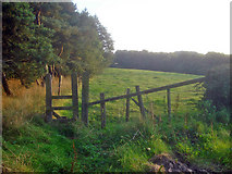 SK4464 : Stile near Stainsby Plantation by Trevor Rickard