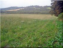 SK4463 : Meadow west of Hardwick by Trevor Rickard