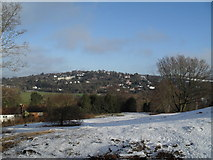 SU9948 : View from the top of St Catherine's Hill by Basher Eyre