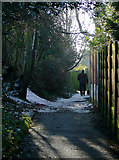SO9096 : Footpath near Goldthorn Hill, Wolverhampton by Roger  Kidd