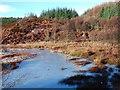 NR7661 : Lochan Maol Morag by Patrick Mackie