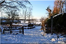 NZ5906 : Gate of Forestry Road, Bank Foot by Paul Buckingham