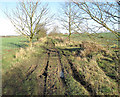 TL6352 : Byway to Carlton and Willingham Green by Hugh Venables