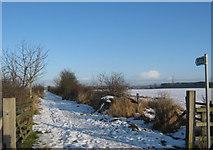 NZ2535 : Partnerships Lane, Tudhoe Village, County Durham by peter robinson