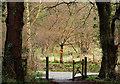 J3168 : Gate and trees near Edenderry, Belfast by Albert Bridge