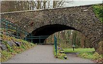 J3269 : Shaw's Bridge, Belfast (11) by Albert Bridge