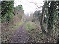 SU3788 : Towpath to East Challow by Bill Nicholls