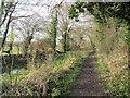 SU3788 : Towpath to the track by Bill Nicholls