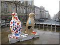 SJ3589 : Go Penguins in Hope Street by John S Turner