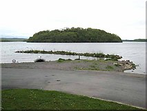 G8205 : Hog Island, Lough Key by Oliver Dixon