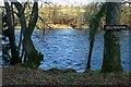 SO0053 : Gellynen Pool by Graham Horn