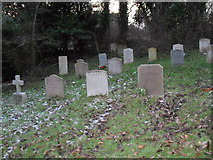 SU8518 : Lingering frost in the churchyard at St Mary, Bepton by Basher Eyre