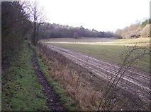 TR0254 : Bridleway to Badlesmere Park Wood by David Anstiss