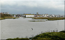 TQ2104 : Tidal waters near Shoreham-by-Sea, West Sussex by Roger  Kidd