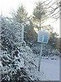 SN1306 : Wonky Road Sign in Sardis by Pauline Evans