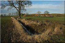 SP0058 : Ditch near Gannow Farm by Philip Halling